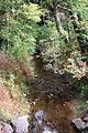 Fisher Run looking downstream.JPG