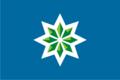 Flag of Malysheva (Sverdlovsk oblast).png