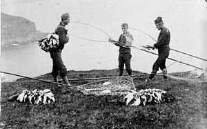 Faroese puffin - Faroese fleygers with their catch, late 19th century