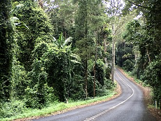 D'Aguilar National Park - Mount Glorious Road, 2016