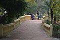 Footbridge - Agri-Horticultural Society of India - Alipore - Kolkata 2013-01-05 2358.JPG
