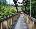 Footbridge over the Afon Banwy - geograph.org.uk - 553898.jpg