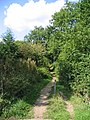 Footpath, Thorndon Country Park, Brentwood - geograph.org.uk - 53130.jpg