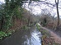 Footpath along Hobsons Brook - geograph.org.uk - 647612.jpg