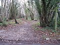 Footpath and bridleway junction at Gennets Farm - geograph.org.uk - 1613995.jpg