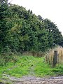 Footpath near Woodborough - geograph.org.uk - 1428519.jpg