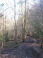 Footpath to Farnham Lane - geograph.org.uk - 1733735.jpg