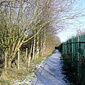 Footpath to Goldthorn Hill, Wolverhampton - geograph.org.uk - 1634394.jpg