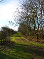 Footpath to Laughton Park Farm - geograph.org.uk - 323256.jpg