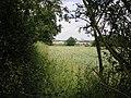 Footpath to Moreton - geograph.org.uk - 190764.jpg