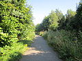 Footpath to the Shropshire Union Canal at Wolverham, Ellesmere Port (9).JPG