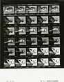 Ford A0801 NLGRF photo contact sheet (1974-09-16)(Gerald Ford Library).jpg