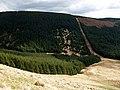 Forest edge and firebreak, Blaeberry Edge - geograph.org.uk - 762316.jpg