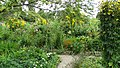 France - Giverny, Fundation Claude Monet - panoramio (20).jpg