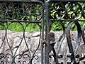 Friedländerska kyrkogården wrought iron gate 01.jpg