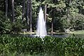Friendship Pond Fountain NBG LR.jpg