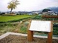 Furumiya Ruins.jpg
