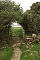 Gate on the Bridleway - geograph.org.uk - 1443666.jpg