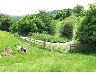 Gwladys ferch Dafydd Gam - Gateway and country lane near Bredwardine