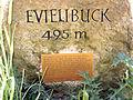 Gedenkstein auf dem Evielibuck in Wittnau.jpg