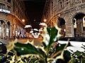 Genova - Via XX Settembre vista da Piazza De Ferrari - Luminarie di Natale 25 Nov.2017.jpg
