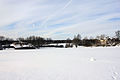 Gfp-wisconsin-madison-winter-landscape.jpg
