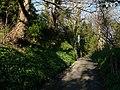 Glen Maye, evening sunlight - geograph.org.uk - 779203.jpg