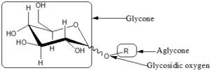 Monosaccharide nomenclature - Image: Glycoside
