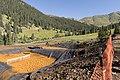 Gold King Mine - August 14, 2015 (20441491430).jpg