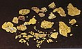 Gold nuggets (placer gold) (Wire Patch Placer Deposit, Farncomb Hill, near Breckenridge, Colorado, USA) 1 (16453619623).jpg