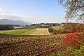 Grafenstein Althofen Fluren und Felder 12112011 254.jpg