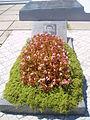 Grave of fallen? (194631186).jpg