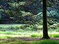 Graver Arboretum - 332.jpg