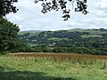Grazing Land and Teifi Valley, Llanio, Ceredigion - geograph.org.uk - 509887.jpg