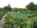 Great Longstone - Hardy Plant Nursery on Station Road - geograph.org.uk - 864374.jpg