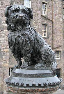 Ένα διάσημο  σκυλάκι...