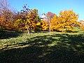 Gryshko botanical garden (Oct 2017) 2.jpg