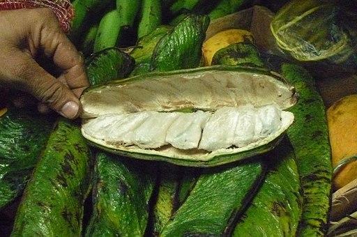 frutas medicinales del amazonas: guama o inga edulis