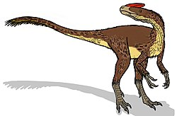 Guanlong wucaii feathered.JPG