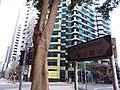 HK 沙田北 Shatin North 石門 Shek Mun 安平街 On Ping Street Feb 2019 SSG 14.jpg