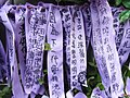 HK Admiralty Tamar Square Ribbon message 065 Purple 9-Sept-2012.JPG