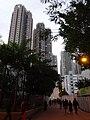 HK evening 沙田第一城 Shatin City One 晴碧花園 Sunshine Grove G0209-2 DSC (2).JPG