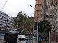 HK tram 21 tour view SKW 筲箕灣道 Shau Kei Wan Road February 2020 SS2 09.jpg