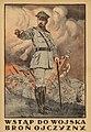 Haller plakat 1920.jpg