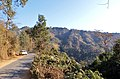 Heading to the town of Sihphir in Mizoram, India - panoramio.jpg
