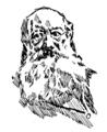 Heinrich Vogeler, Peter Kropotkin.png