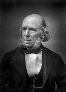 Herbert spencer contribution to sociology essays
