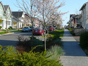 West Seattle, Seattle - Houses are built close to the street.  Bioretention swales or rain gardens treat and control stormwater from the streets with plants.