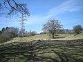 Hillside farm track - geograph.org.uk - 1758597.jpg