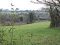 Hillside grazing at Little Birch - geograph.org.uk - 664702.jpg
